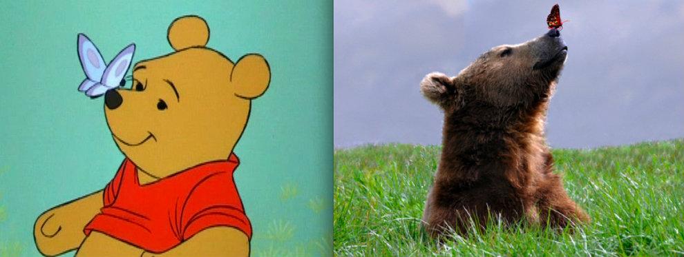 มุมเดียวกันเป๊ะ ภาพสัตว์จากการ์ตูนดิสนีย์ vs สัตว์มีชีวิตจริง