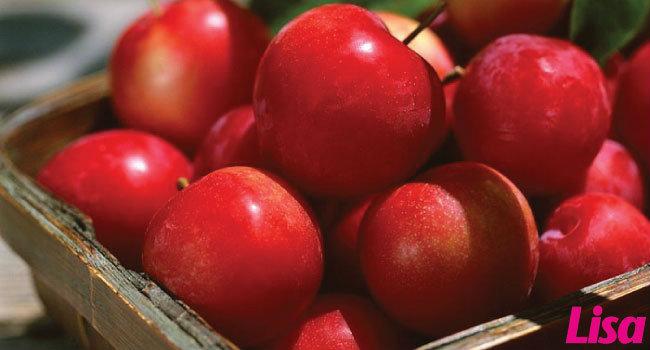 แอปเปิ้ลวันละลูก... เริ่ดจริง ไม่ได้โม้