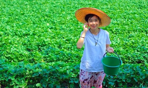 อนาคตของชาติ ! สร้างทายาทเกษตรกรในโรงเรียน องค์ความรู้ที่ใช้ได้จริง