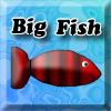 เกมส์เลี้ยงปลา Big Fish