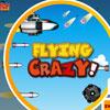 เกมส์เครื่องบิน  Flying Crazy