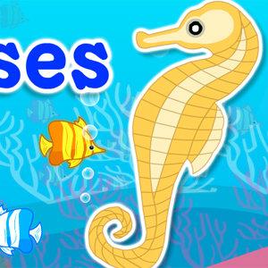 เกมส์หาของ find my sea horses