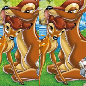 เกมส์ เกมส์จับผิดภาพสัตว์ป่าน่ารัก