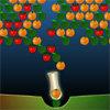 เกมส์ยิงลูกบอล Shoot the Fruits