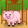 เกมส์เลี้ยงสัตว์ baby piggy care