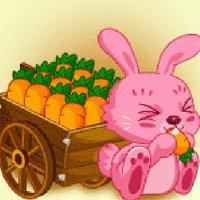 เกมส์ปลูกผัก rabbit farm