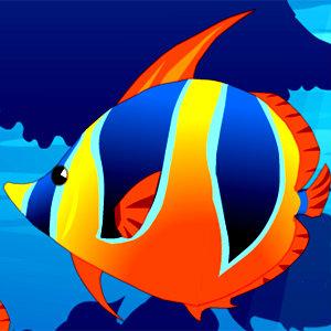 เกมส์เลี้ยงปลา My Sweet Fish