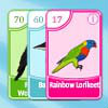 เกมส์ไพ่ Bird Pax