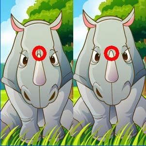 เกมส์จับผิด animal life spot difference2