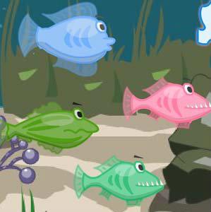 เกมส์เลี้ยงปลา A little shark