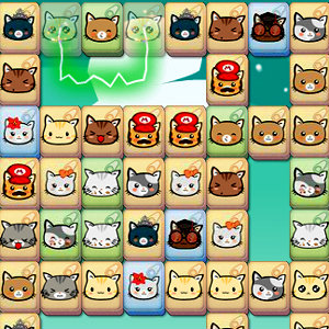 เกมส์จับคู่ เกมส์จับคู่แมว