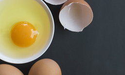 """จริงหรือไม่? """"ไข่ขาว"""" ดีต่อสุขภาพมากกว่า """"ไข่แดง"""""""