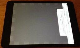 เจอปัญหาซะงั้น iPad mini Retina เจอปัญหาภาพค้างในบางตัว