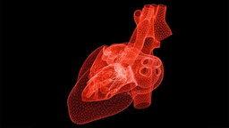 """AI ตัวใหม่! ประเมินความเสี่ยงหัวใจวายได้ """"แม่นกว่า"""" หมอ"""