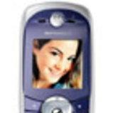 Motorola C651