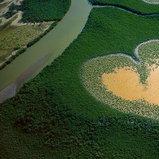 Heart of Voh