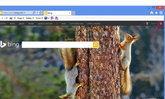 วิธีง่ายๆ กับการลบ History ออกจาก Bing