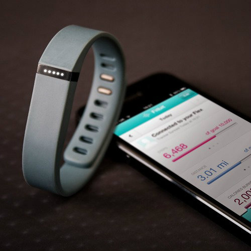 Fitbit-Flex-iVIP-BlackBox (1)