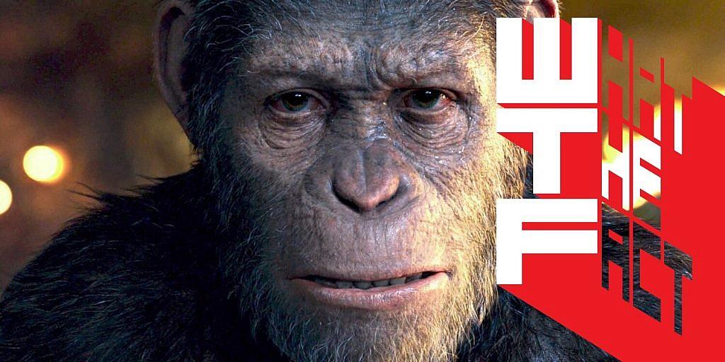 อธิบายฉากจบ War for the Planet of the Apes เชื่อมโยงถึงต้นฉบับ Planet of the Apes