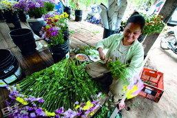 ตามรอยโครงการพัฒนาตามพระราชดำริ โครงการหลวงห้วยเขย่ง จ.กาญจนบุรี