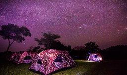 ผจญภัยใกล้ชิดดาวในอุทยานแห่งชาติพุเตย จ.สุพรรณบุรี