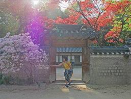 สั้นๆ ในเมืองโซล เกาหลีใต้
