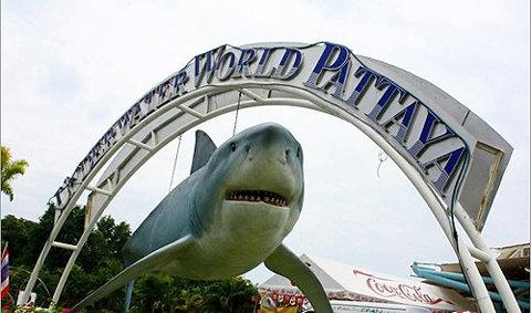 อันเดอร์ วอเตอร์ เวิลด์ พัทยา (Underwater World Pattaya)