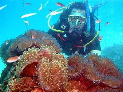 งานโลกทะเลชุมพร ประจำปี 2554