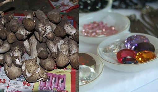 งานเทศกาลเห็ดโคน อัญมณีของดีบ่อพลอยและงานกาชาด  ครั้งที่ 13 ประจำปี 2555