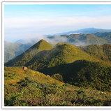 สังคมพืชบนเขาเจ็ดยอดจะเป็นป่าแคระทำให้มองเห็นรูปทรงของภูเขาน้อยใหญ่ได้ชัดเจน