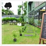 Launderette Garden