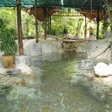 Rock Valley Hot Spring and Fish Spa