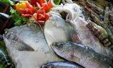 เทศกาลอาหารทะเลจังหวัดสมุทรสาคร ครั้งที่ 10