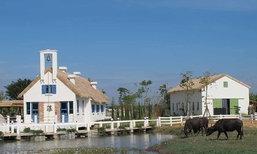เที่ยวแนวใหม่ 'มินิมูร่าห์ฟาร์ม' ฟาร์มควายนม..เชิงท่องเที่ยวแห่งแรกในไทย