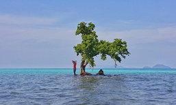 เกาะกระดาด มหัศจรรย์แห่งความงามของท้องทะเลตราด