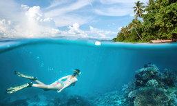 ระวัง! 5 สัตว์ทะเลสวยแต่มีพิษ ห่างให้ไกลเมื่อไปดำน้ำ
