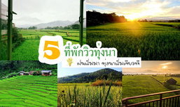 ฝนเริ่มมา ทุ่งนาเขียวขจี ไปสัมผัสบรรยากาศดีๆกับ 5 ที่พักวิวทุ่งนา