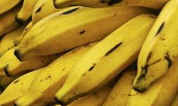 ลดน้ำหนักอย่างสบายใจ เมนูทำได้ ง่ายๆ แบบกล้วยๆ