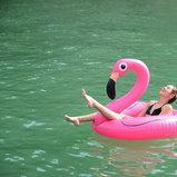 ดาราชุดว่ายน้ำ