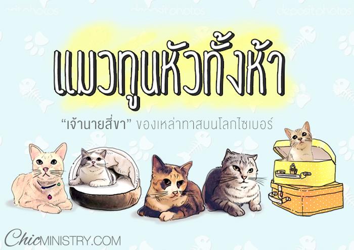 แมวทูนหัวทั้งห้า…เจ้านายสี่ขาของเหล่าทาสบนโลกไซเบอร์